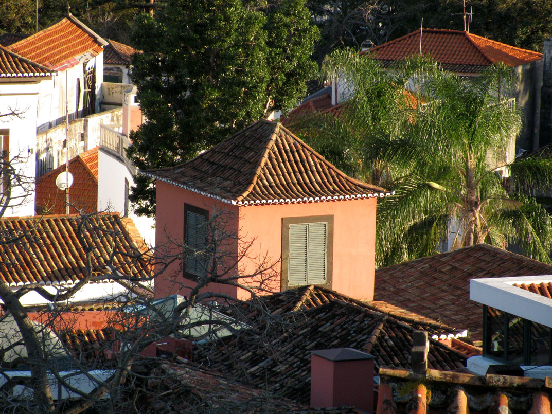 roofs and towers