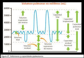 definicion de volumen de aire corriente