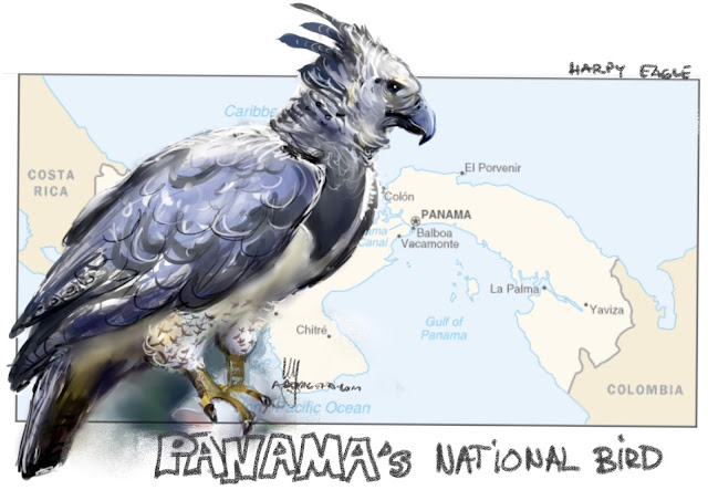 Panama's national bird Painting by Ulf Artmagenta