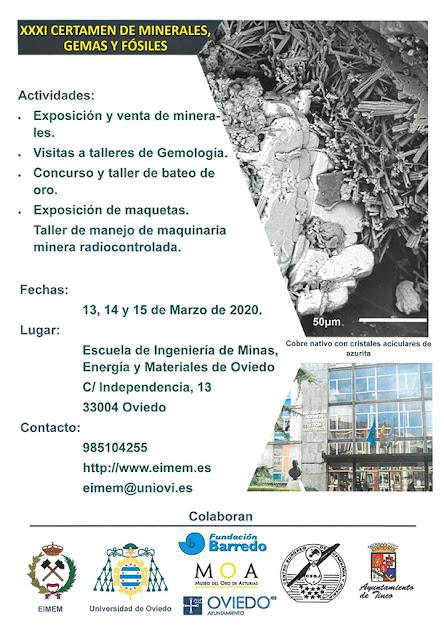 cartel, certamen, minerales, gemas, fósiles, Oviedo, 2020