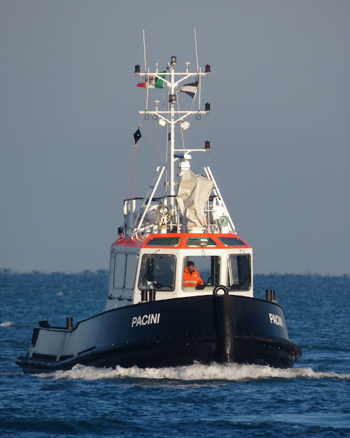 Stan Tug Pacini, MMSI 247380100, port of Livorno