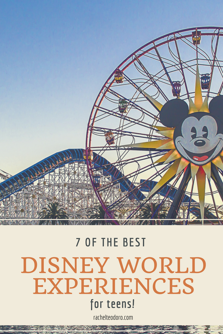disney as a family vacation on a budget