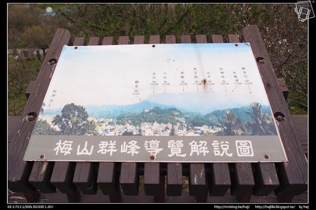 2017-01-31嘉義梅山-梅山公園賞梅