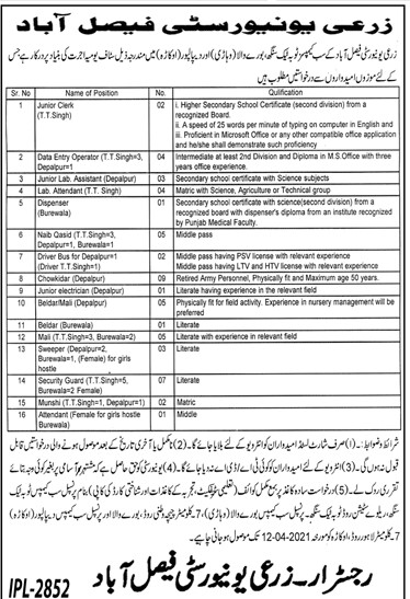 Agriculture University of Faisalabad Jobs 2021 in Pakistan