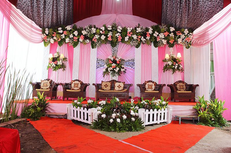 Paket pernikahan di rumah dengan dekorasi mewah dan elegan