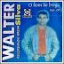 Walter Silva - Vol. 01