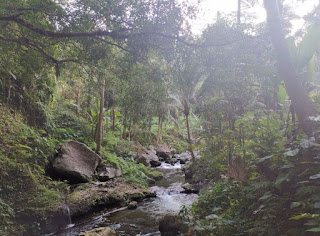 Indonesia, Isla de Bali, Gunung Kawi o Templo de los Dioses.