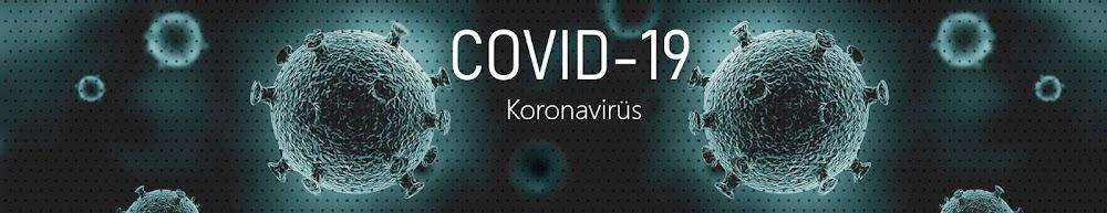 Kovid-19 - Koronavirüs