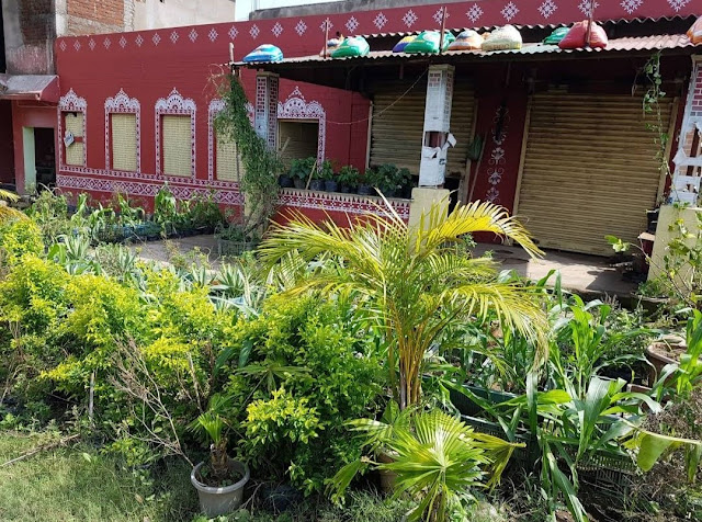 The beautiful look of the Odiani Restaurant
