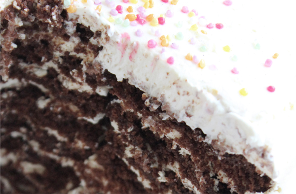 Chocolate Ripple Cake: Last Minute Sprinkles Party Part Six by Eliza Ellis