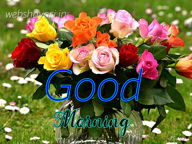 simple good morning images download hd wallpaper for whatsapp friends