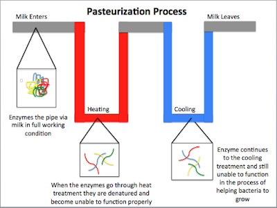 Pasteurization is a relatively mild heat treatment in which food is heated to above 100°C.