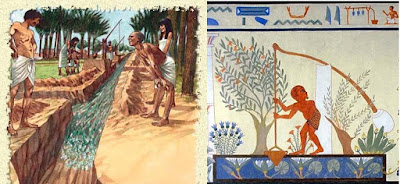 Agriculture in Egypt Agriculture in Egypt