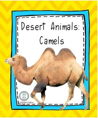 Bible Fun For Kids: God Makes the Desert Animals: Camels