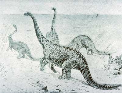 snorkeling%2Bbrachiosaurus.jpg