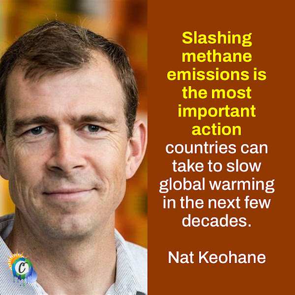 Slashing methane emissions is the most important action countries can take to slow global warming in the next few decades. — Nat Keohane, President, Center for Climate and Energy Solutions (C2ES)