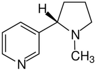estrutura química da nicotina