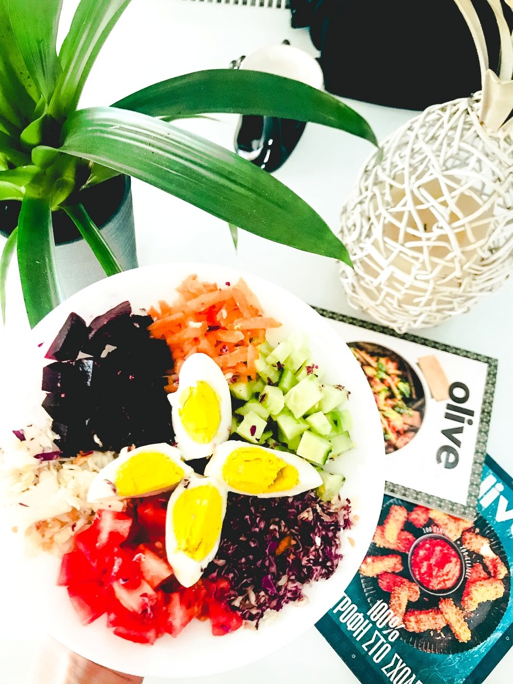 healthy salads as lunch meal, healthy lifestyle and clean eating, zdrav zivot zdrave salate zdravi obroci