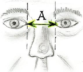 MCQ's in Facial Plastic & Reconstructive Surgery: 1151