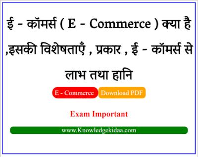 ई - कॉमर्स ( E - Commerce ) क्या है ,इसकी विशेषताएँ , प्रकार ,  ई - कॉमर्स से  लाभ तथा हानि   PDF Download  