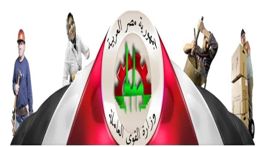 وزارة القوى العاملة: رابط وخطوات التسجيل لراغبي العمل والتقديم للوظائف لكل المؤهلات والتخصصات