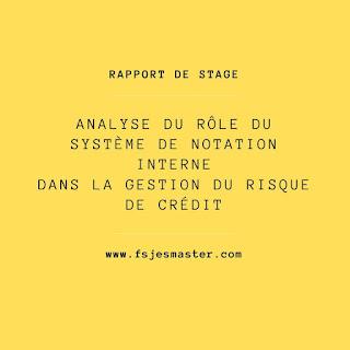 Rapport de stage: Analyse du rôle du système de notation interne dans la gestion du risque de crédit
