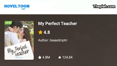Novel My Perfect Teacher