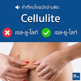 คำที่คนที่มักอ่านผิด - Cellulite