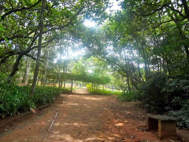 Parque Santo Dias