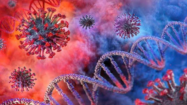Virus Corona dan Vaksin Influenza