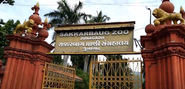 सक्करबाग प्राणि संग्रहालय, जूनागढ़ - Sakkarbaug Zoological Garden, Junagadh