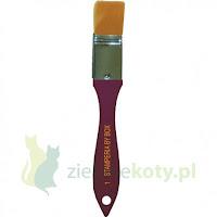 http://zielonekoty.pl/pl/p/Pedzel-plaski-syntetyczny-Stamperia-25mm/785