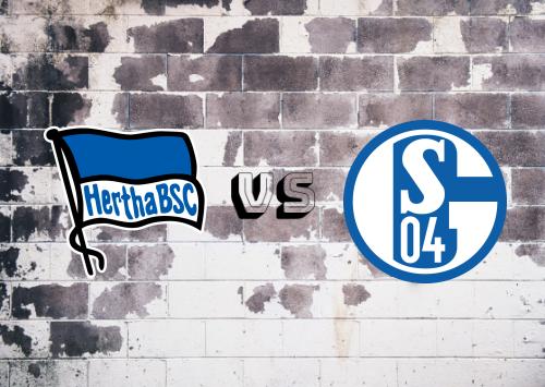 Hertha BSC vs Schalke 04  Resumen