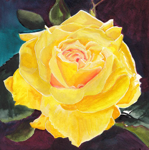 Bunny 39 s artwork yellow rose 5 watercolor painting for How to paint a rose watercolor