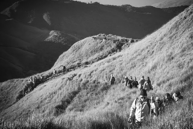 hiking Mt. Pulag in black and white