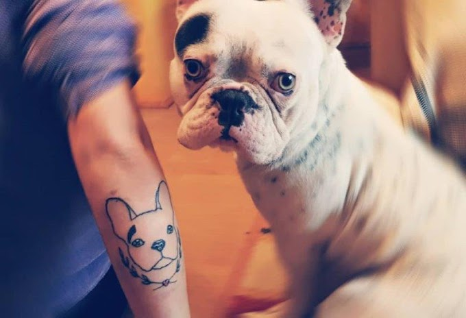 20 Tattoos Ideas That all Dog Lovers Will Want To Make. You'll love them!