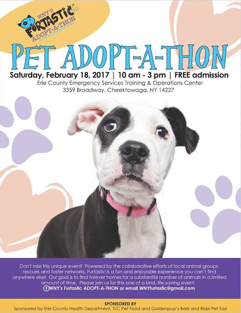 Dont Miss The Furtastic ADOPT-A-THON This Saturday!