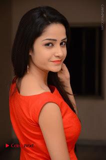 Telugu Actress Divya Nandini Stills in Orange Sleeveless Gown at Chennai Chaitrama Movie le Launch Event  0031.JPG