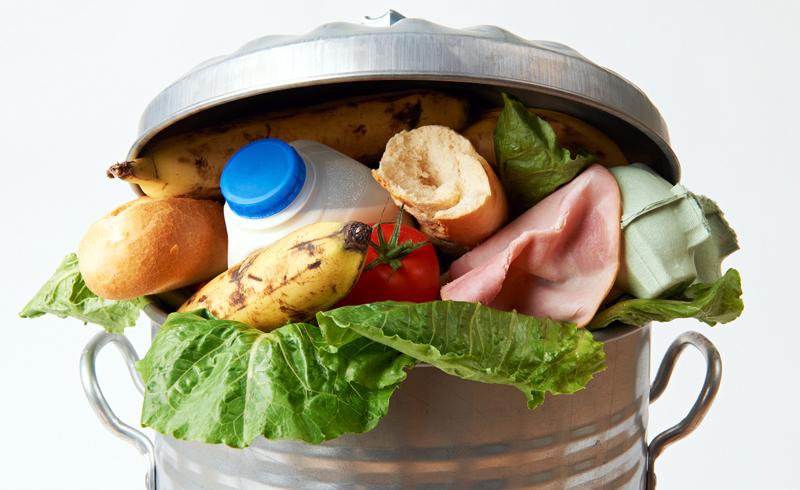 Food Wasting