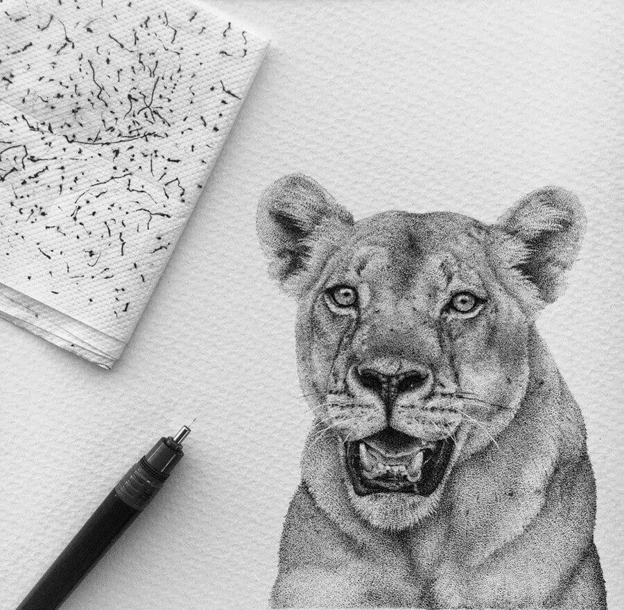 05-Lioness-Paige-Bates-www-designstack-co