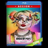 Aves de presa (y la fantabulosa emancipación de una Harley Quinn) (2020) BRRip 720p Audio Dual Latino-Ingles