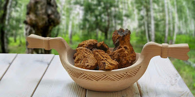 The two sides of Chaga
