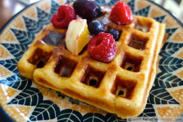 http://www.farmfreshfeasts.com/2013/01/butternut-squash-waffles.html