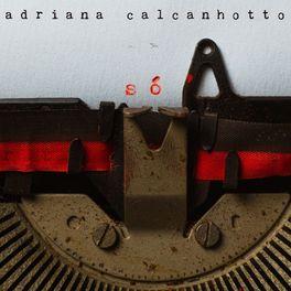 Baixar Eu Vi Você Sambar - Adriana Calcanhotto Mp3