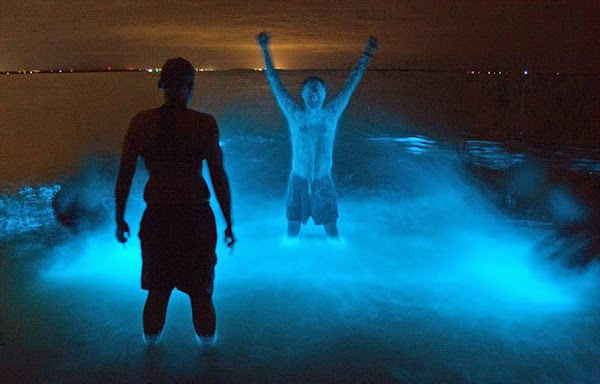 Glowing Water In Puerto Rico Tours