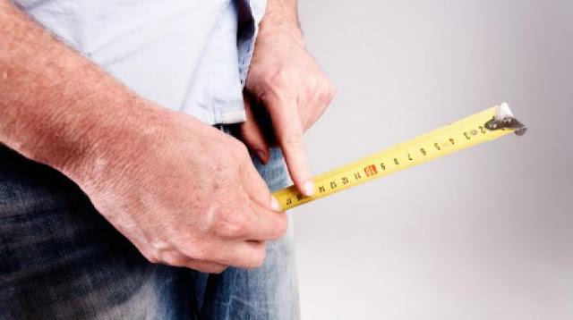 Kako pravilno izmjeriti penis i koliko je formalna njegova prosječna dužina