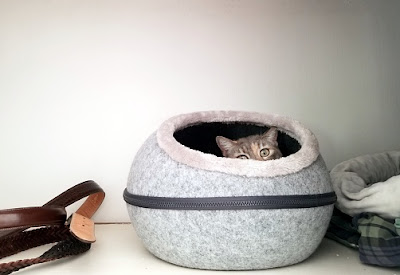 kasur tidur kucing