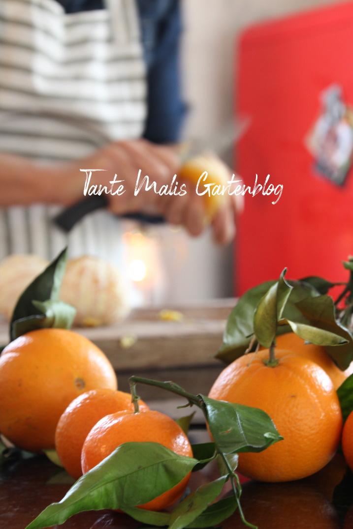 Vorbereitung für Orangensenf