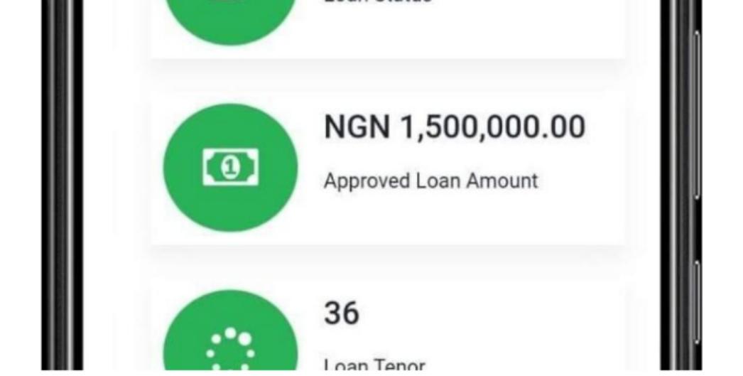 """Tsarin Bada Ranche Na """"Nigeria Youth Investment Fund"""" (NYIF) Sun Fara Shirye Shirye Tura Training Ga Wa 'Yanda Suka Kammala Cika Bayanansu."""