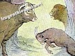 Truyện ngụ ngôn song ngữ : Con bò đực và con dê